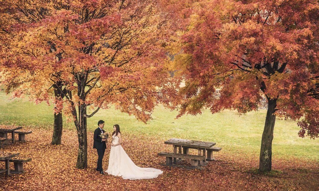 写真:秋のウエディングプラン